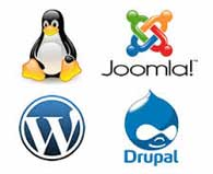 Wordpress Joomla Hosting